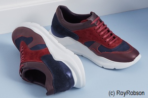 Die Welt der Schuhe > Artikel > host