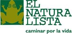 Schuhe von El Naturalista